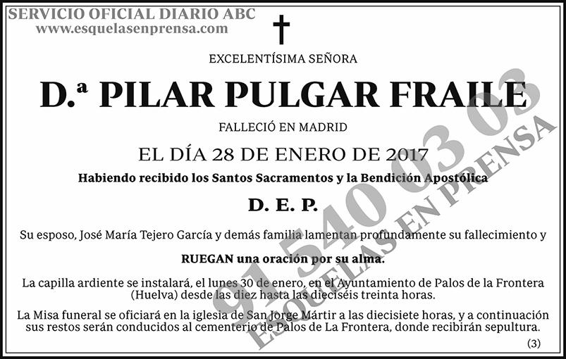 Pilar Pulgar Fraile